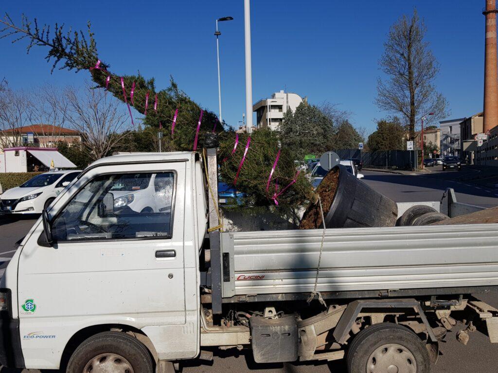 2021.3.18 Camion trasporto cedroIMG-20210318-WA0026